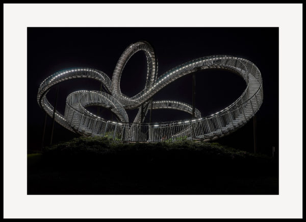 Tiger & Turtle #05